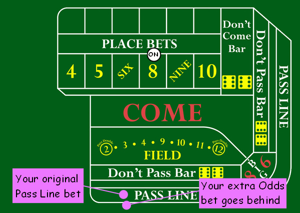 Odds on pass line bet in craps each way betting explained ladbrokes bingo